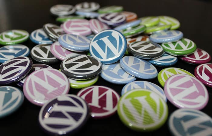 Avoid Using WordPress in Your Domain Names