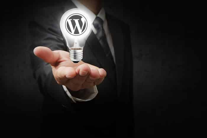 WordPress is a business solution