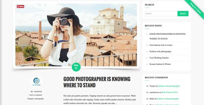 FaceBlog Free WordPress Theme post design