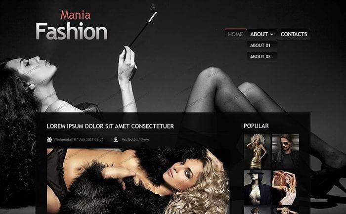 Fashion WP Template