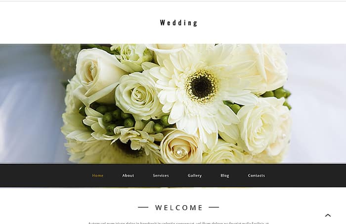 Top 20 Feminine WordPress Themes Spring 2017
